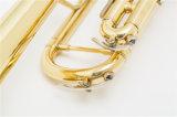 Cheap trompette /Laque Gols /Prix de gros