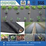 Beste Qualität und wirkungsvolles nichtgewebtes Bodendeckel-Gewebe