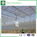 Serres van het Blad van het Polycarbonaat van de Spanwijdte van de landbouw de Multi voor het Planten