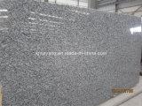 De oceaan Plak van het Graniet van de Oester van de Nevel Witte voor Countertop