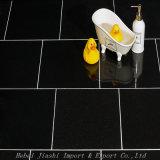 Hot Sale des carreaux de sol en granit noir absolu pour les intérieurs et extérieurs
