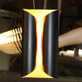 Lampe de mur noire légère de fer de quatre Matt pour la salle de séjour