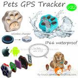 GPS+Lbs+Agps+WiFi V32를 가진 휴대용 소형 애완 동물 GPS 추적자