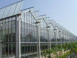 duidelijke/Gevormde Aangemaakte Glas van 3.26mm het ultra voor Groen Huis