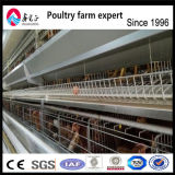 Cages de couche de matériel de ponte d'oeufs de poulet/oeufs de poulet