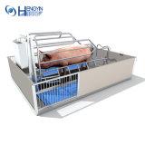 Matériel de ferme de vente d'usine pour des porcs