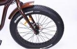 En dos ruedas Motor oculto de litio de diseño clásico Bicicleta eléctrica