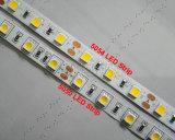 高く明るいSMD5054 LEDのストリップ60LEDs