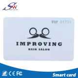 주문을 받아서 만들어진 인쇄된 13.56MHz Mf RFID PVC 카드