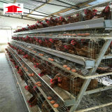 الصين [بوولتري فرم قويبمنت] طبقة دجاجة قفص