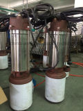 Pompa ad acqua sommergibile della STAZIONE TERMALE per l'acqua di acque luride sporca