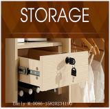 أثاث لازم بينيّة متأمّلة غرفة نوم خزانة ثوب