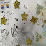 6мм дизайн декоративного искусства стекла для помещений с
