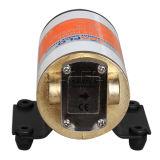 Pompe à engrenages électrique portative de la pompe à essence de C.C 12V/24V