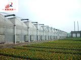 Casa verde da construção de aço galvanizada