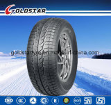 Los deportes de invierno neumáticos de coches (225/45R17, 225/50R17).