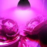 가득 차있는 스펙트럼은 램프 E27 LED를 증가한다 점화를 증가한다