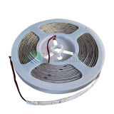 Luz 60LEDs/M da corda do diodo emissor de luz de IP65 SMD3528 para a iluminação Cost-Effective