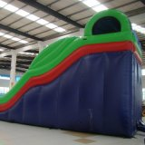 Customized Funny Sports Inflatable Slides (SL-0104)