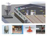Set pieno Poultry Farm Equipment per Chicken Production