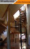 프로젝트를 위한 실내 주문 스테인리스 유리제 나선형 계단
