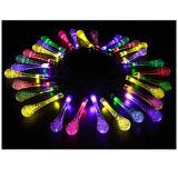 Jardin LED solaire de luminaires décoratifs (TJ-SPL-020)
