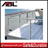 Escada / trilho de varanda ao ar livre de aço inoxidável (DD018)
