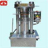 アボカド、グリーンオリーブオイル冷たい油圧出版物機械
