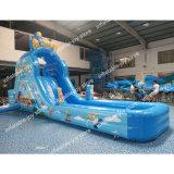 Les enfants en faveur de l'eau gonflable Diapositive, 7/8/9m de long Diapositive gonflable personnalisé avec piscine, jardin Faites glisser un terrain de jeux