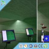 Tuiles décoratives acoustiques de plafond d'isolation thermique pour l'immeuble de bureau