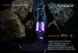 고품질, 직업적인 UV 365nm LED 플래쉬 등, 균형 스포트라이트, 순수한 색깔 및 비 투광램프
