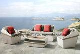 Самомоднейшая мебель сада мебели патио софы ротанга (TG-JW14)