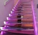 Kits modernos de las escaleras del LED que flotan la escalera con la pisada de cristal endurecida