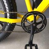 Vélo électrique de couleur de gros paladin différent de pneu avec la batterie au lithium de 21 vitesses