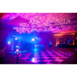 Système stupéfiant Dance Floor portatif de plancher de PVC Wedding