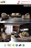 إيطاليا يعيش غرفة حديثة بناء أريكة ([هك8110])