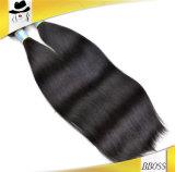 ブラジル10Aバージンの毛の拡張を販売し始める方法