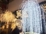 Renos, trineo 3 D Las figuras y siluetas luz