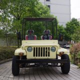 mini quarte de la jeep Willys/UTV/ATV de 200cc 150cc pour l'adulte