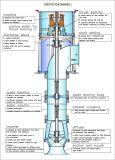 Bomba centrífuga do eixo longo vertical da turbina