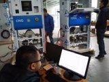 De Automaat van de Apparatuur CNG van het Benzinestation van de Bestseller CNG voor Verkoop