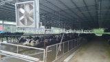 Wechselstrom-Flügelradgebläse-industrieller Kühlventilator-Absaugventilator