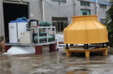 Qualitäts-Feed-back-große Flocken-Eis-Maschine für Fleisch Sdwt-30tr2