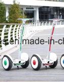 15дюйма электрического скутера мобильности с 1000W