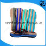 熱い販売法の流行の多彩の縞のスリッパの靴底