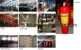 Extintor de incêndio do ABC (MFZ-5KG)