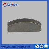 Magnete di forma irregolare del neodimio di trattamento N45 del fosfato