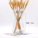 Оптовая торговля ваза из стекла для дома украшения