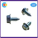 GB/DIN/JIS/ANSI/Stainless-Steel Carbon-Steel brida hexagonal con tornillos autorroscantes para la construcción