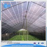Черная и зеленая аграрная сеть тени Sun